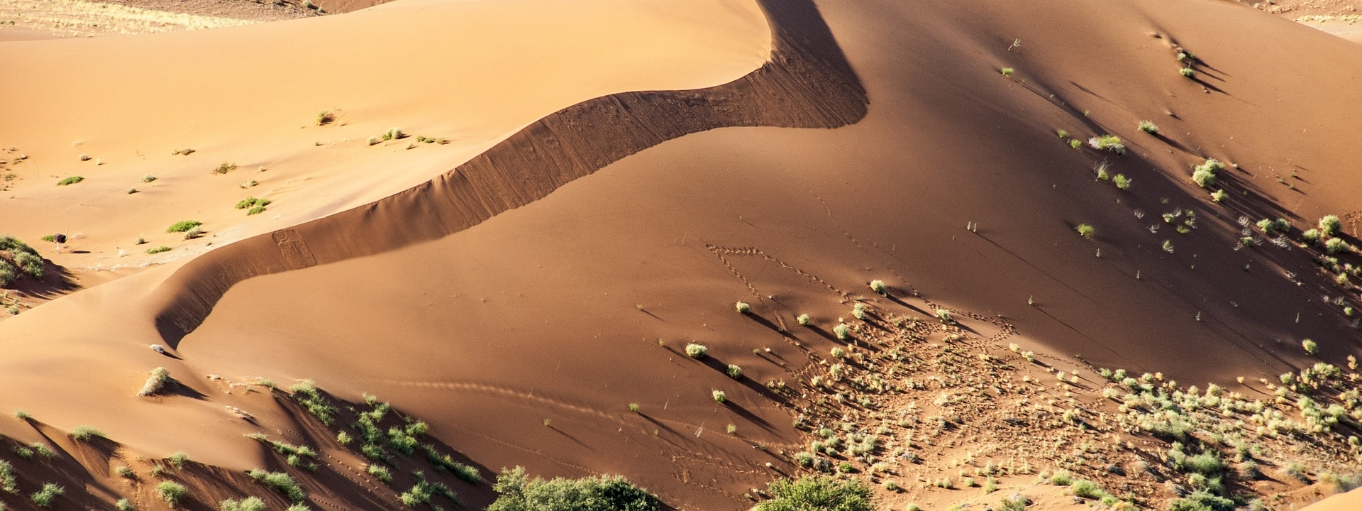 How are the semi-arid regions of Africa and Asia adapting to climate change?